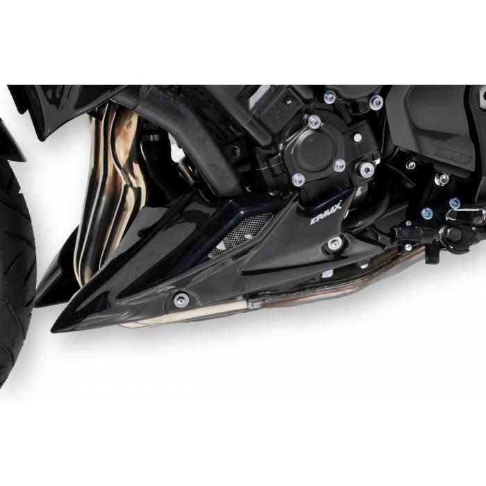 Sabot moteur Ermax FZ8 2010/2015