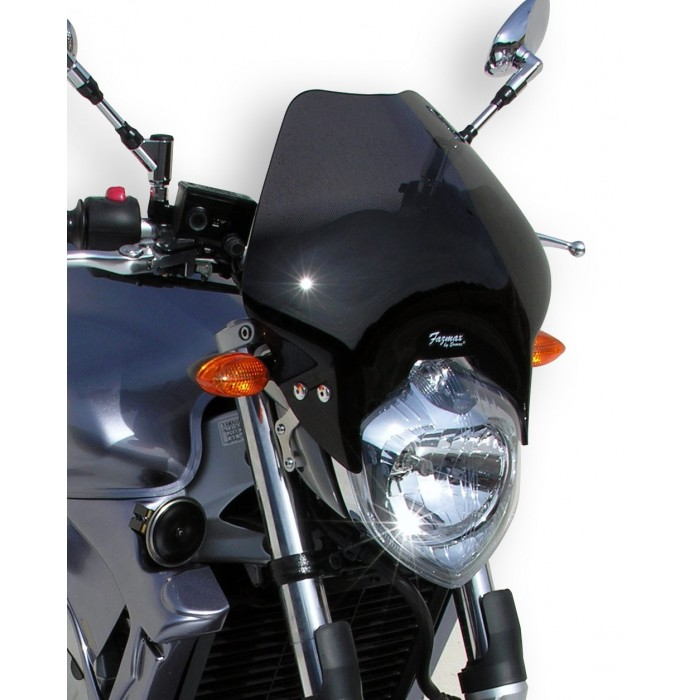 Ermax nose screen FZ6 2004/2007