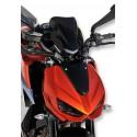 Ermax sport nose screen Z 1000 2014/2018
