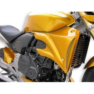 Ermax : Radiator scoops 600 Hornet