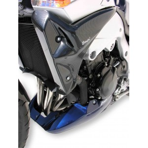 Ermax : Radiator scoops GSR 600