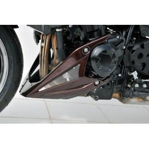 quilla motor Z 1000 2010/2013 Quilla motor Ermax Z1000 2010/2013 KAWASAKI EQUIPO DE MOTO
