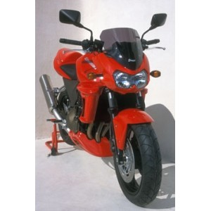 bulle haute protection Z 1000 2003/2006