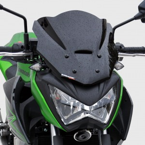 sport nose screen Z 300 2015/2016 Sport nose screen Ermax Z300 2015/2016 KAWASAKI MOTORCYCLES EQUIPMENT