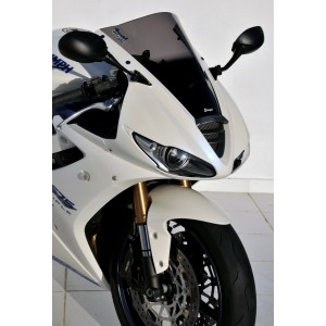 aeromax screen DAYTONA 675 2009