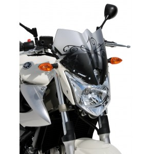 nose screen XJ 6 N 2009/2012