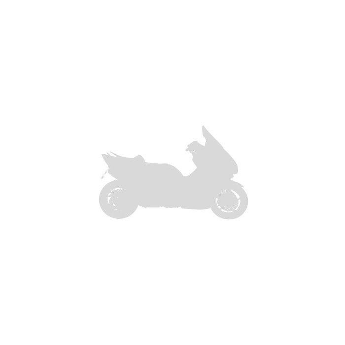Pare-brise taille origine Ermax pour C 650 GT 2012/2020