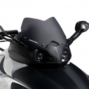 sport screen SPYDER RS/RSS 990 2008/2012
