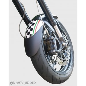 Extensor de paralama dianteiro Extensor de paralama dianteiro Ermax SPEED TRIPLE 1050 2005/2010 TRIUMPH EQUIPAMENTO DE MOTOS