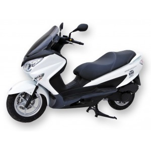 Ermax sport windshield 125 Burgman 2007/2018