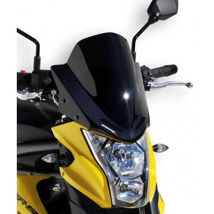 Ermax sport nose screen ER6N 2012/2015