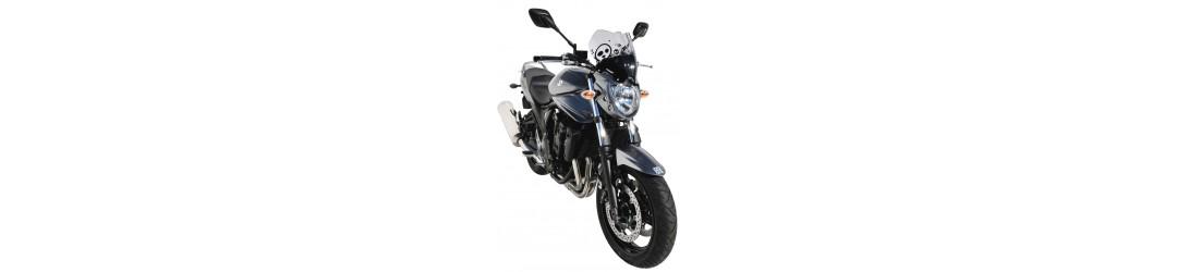 Accessoires Ermax pour Suzuki GSF 1250 Bandit N 2010/2014